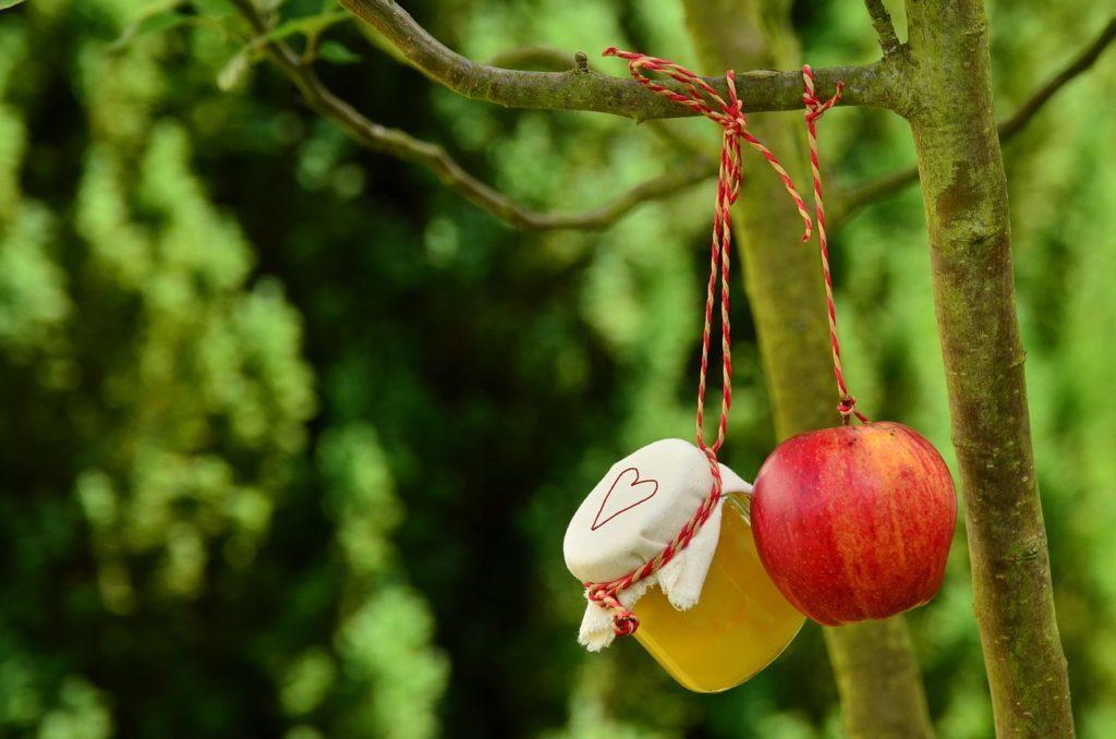 Alma és méz a fán