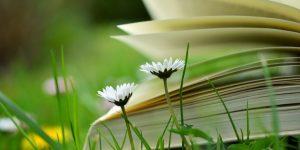 Kertészeti cikkek